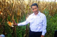 Mampu Gerakan Pertanian, Mentan Amran Dijuluki Bapak Mekanisasi - JPNN.com
