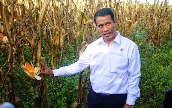 Ketum HIPMI: Kemudahan Proses Investasi Pertanian Pengaruhi Tingkat Kesejahteraan - JPNN.com