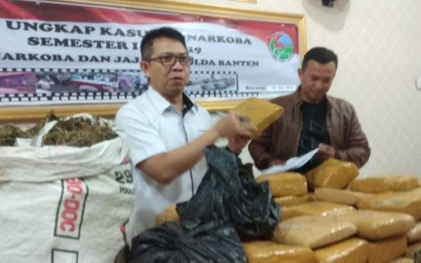 Polda Banten Amankan 82 Kg Ganja dari Lima Bandar - JPNN.com