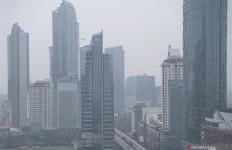 WALHI: Kondisi Jakarta 5 Tahun ke Depan Mengkhawatirkan - JPNN.com