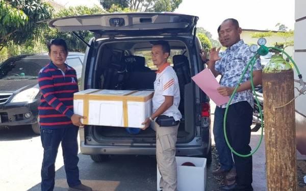Polisi Gagalkan Penyeludupan Baby Lobster Senilai Rp3 Miliar - JPNN.com