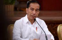 Jokowi Berwenang Penuh Membentuk Dewan Pengawas Pertama di KPK - JPNN.com