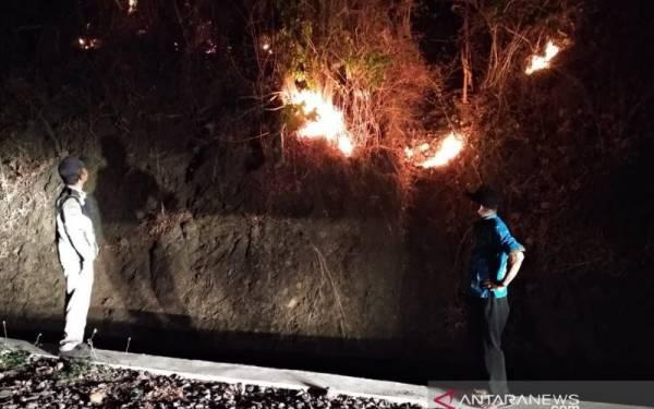 Ratusan Hektare Lahan Cengkih dan Karet Terbakar - JPNN.com