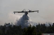 Kebakaran Hutan, Ratusan Warga Yunani Terpaksa Mengungsi - JPNN.com