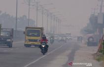 Sebar 1,5 Juta Masker Selama Kabut Asap Karhutla di Riau - JPNN.com