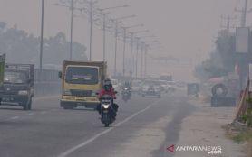 Lapor Pak Jokowi! Kabut Asap di Kota Pekanbaru Makin Parah - JPNN.com