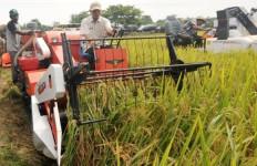 Kemajuan Sektor Pertanian jadi Harapan Ekonomi Indonesia - JPNN.com