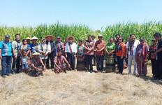 Target Membangun 10 Pabrik Gula Tercapai - JPNN.com