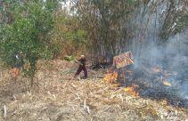 Warga Panik, 10 Hektare Lahan Gunung Cipicung Terbakar - JPNN.com