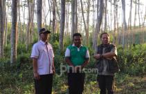 Ali Afandi, Pahlawan yang Hijaukan Kampung Sumberjati - JPNN.com