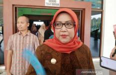 Bupati Akan Jual Potensi Wisata Bogor ke Korea - JPNN.com