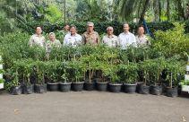 Dukung Pemanfaatan Pekarangan Istana Bogor, Kementan Kirim Ratusan Pohon Cabai - JPNN.com