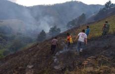 Hutan Seluas 20 Hektare di Kawasan Danau Toba Terbakar - JPNN.com