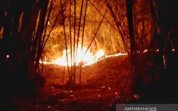 Lahan Gunung Lagadar Bandung Terbakar - JPNN.com