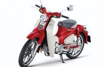 Honda Super Cub C125 Tawarkan Warna Mencolok, Cek Harganya - JPNN.com