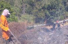 Kebakaran Hutan Gunung Semeru Kini Mencapai 60,4 Hektare - JPNN.com
