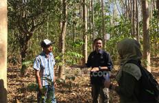Tak Capek Cari Pembeli, KTH Maju Bersama Langsung Jual Kayu di Lahan - JPNN.com