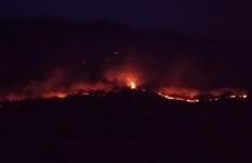 Hutan Gunung Solasih Diduga Sengaja Dibakar - JPNN.com