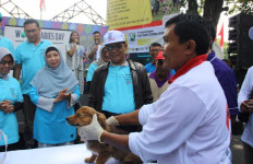 Kementan Perkuat Pendekatan Multi Sektoral Wujudkan Indonesia Bebas Rabies - JPNN.com