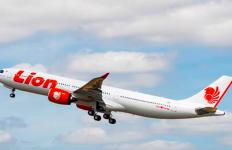 Lion Air Bakal Layani Rute Jakarta-Banyuwangi - JPNN.com