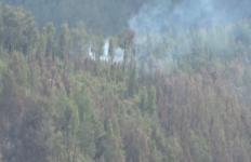 Kawasan Hutan di Gunung Semeru Terbakar Lagi - JPNN.com