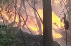 Api dari Tumpukan Sampah Membakar Lima Rumah - JPNN.com