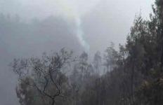 Hutan Penanjakan Wisata Gunung Bromo Terbakar - JPNN.com