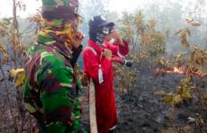 Komandan Kodim Terjun ke Lapangan Padamkan Api Karhutla - JPNN.com