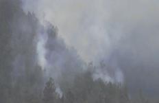 Hutan Gunung Semeru Terbakar Kena Guguran Lava - JPNN.com