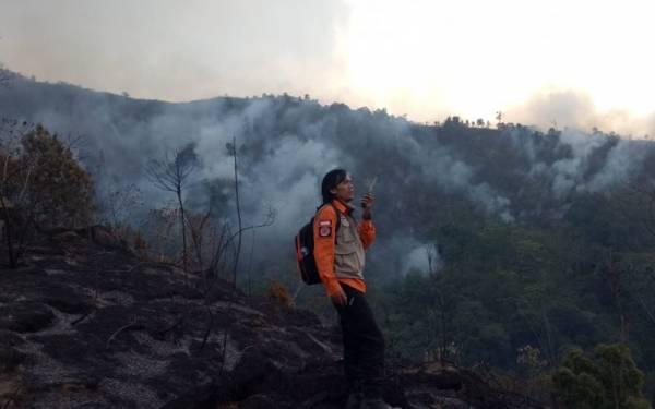 Kebakaran Lahan di Kabupaten Bandung Mencapai 226 Hektare - JPNN.com