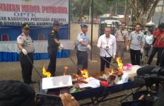 Kementan Musnahkan 83 Komoditas Pertanian Ilegal dari 9 Negara - JPNN.com