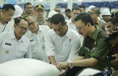 Mentan Amran Optimistis Indonesia Segera Swasembada Gula - JPNN.com