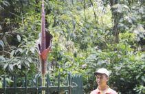 Tanaman Langka Mekar di Kebun Raya Bogor - JPNN.com