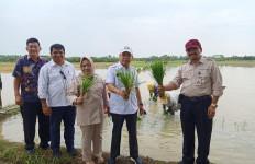 Membedah Strategi Maut Kementan Tambah LTT di Sumut - JPNN.com