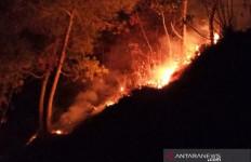 Perhutani Diminta Tanggung Jawab Dampak Kebakaran Hutan Cikuray Garut - JPNN.com