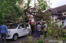 Bruk, Mobil Tertimpa Pohon Besar, Yati Tidak Mengalami Luka - JPNN.com