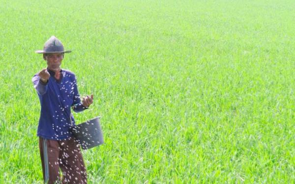 Kementan: Anak Muda Jangan Malu jadi Petani - JPNN.com