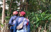 Kera Liar Teror Warga Cibinong Bogor - JPNN.com