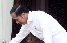 Mantan Wagub Aceh Didukung Masuk Kabinet Jokowi - JPNN.com