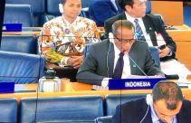 Pertemuan CFS ke-46, Indonesia Berbagi Pengalaman Mencapai Ketahanan Pangan - JPNN.com