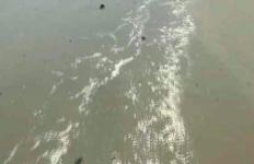 Pabrik Ikan Segar Cemari Lingkungan, Warga Kena Imbas Penyakit Kulit dan Mual Muntah - JPNN.com