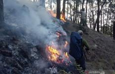 Karhutla di Gunung Arjuno Mencapai 3.000 Hektare - JPNN.com
