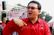 Yakinlah, Kecil Peluang Ahok Jadi Menteri di Pemerintahan Jokowi - JPNN.com