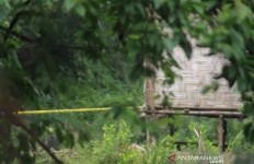 Polisi Temukan Lokasi Diduga sebagai Tempat Perakitan Bom Medan - JPNN.com