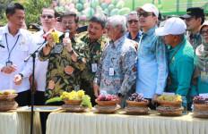 Mentan Syahrul Dukung Pengembangan dan Ekspor Buah Indonesia - JPNN.com