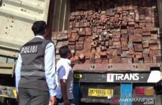 17 Kontainer Pembawa Kayu Ilegal Diamankan - JPNN.com