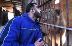 Perang Suriah Bukan Halangan Untuk Mencium Singa atau Berbincang dengan Harimau - JPNN.com