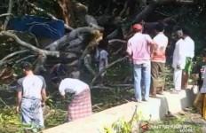 Siri Tewas, Fadel Luka-luka Tertimpa Pohon Tua - JPNN.com