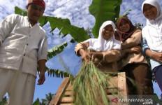 Beras di Kabupaten Sukabumi Melimpah, Surplus 400 Ribu Ton - JPNN.com