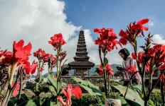 Bali Tuan Rumah Ajang Asian Animation Summit - JPNN.com